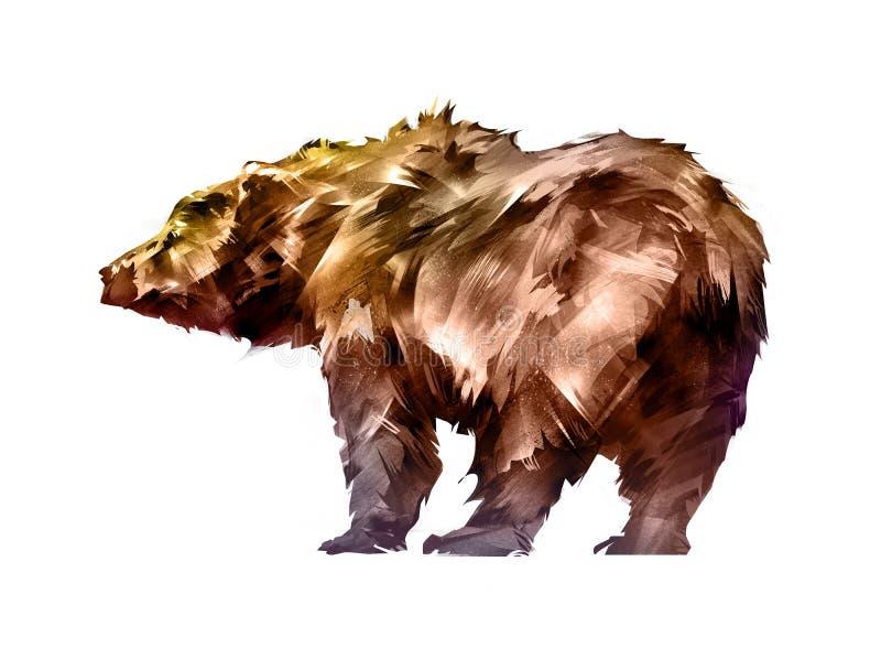 Painted färgade björndjuret på en vit bakgrund royaltyfri illustrationer