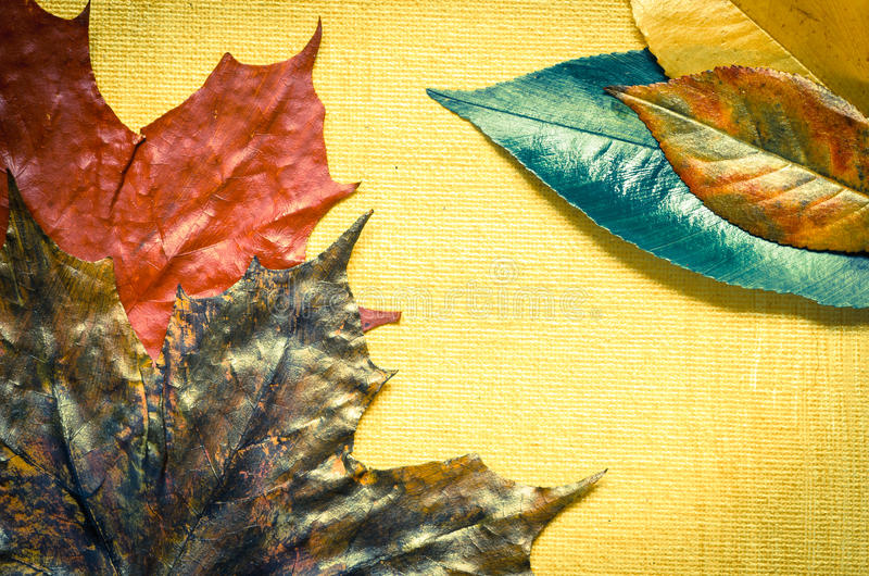 Painted fall leaves. Closeup to painted fall leaves vector illustration