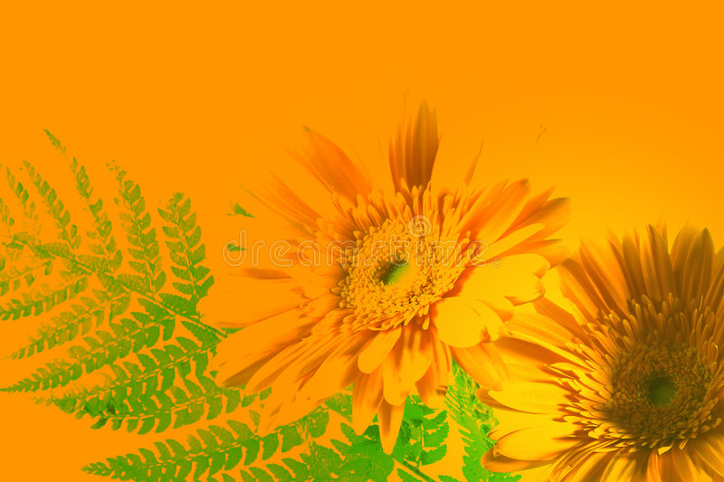 Download Painted Flowers Royalty Free Stock Photo - Image: 2323845