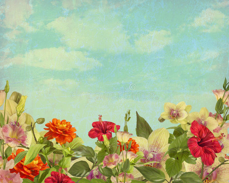 Painted flowers on a background in vintage style royalty free illustration