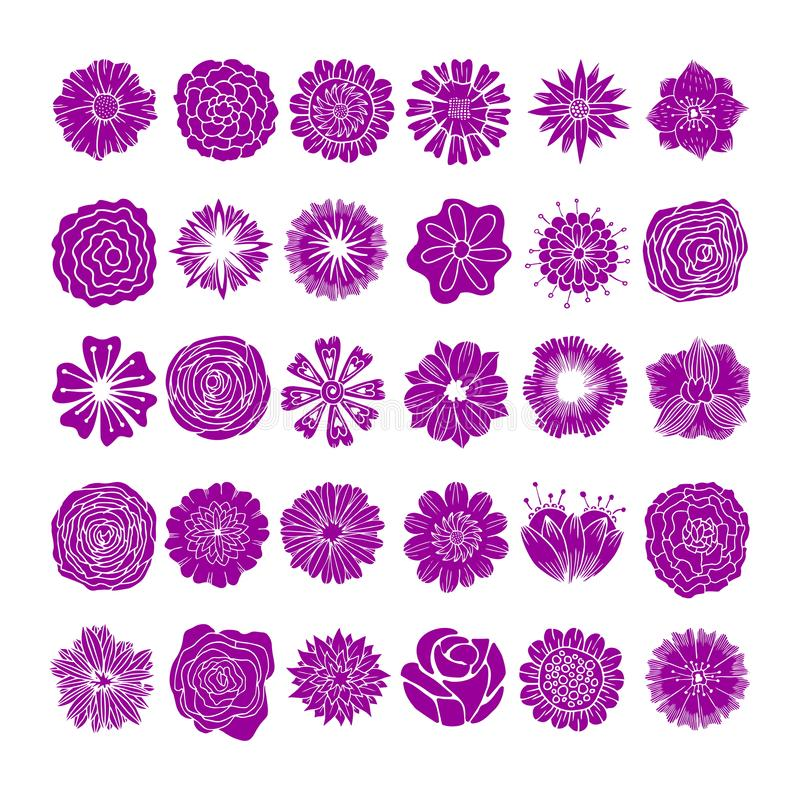 Painted flowers are handmade. Multicolored, monochrome, elegant. For invitations, posters, flyers and other designs. vector illustration