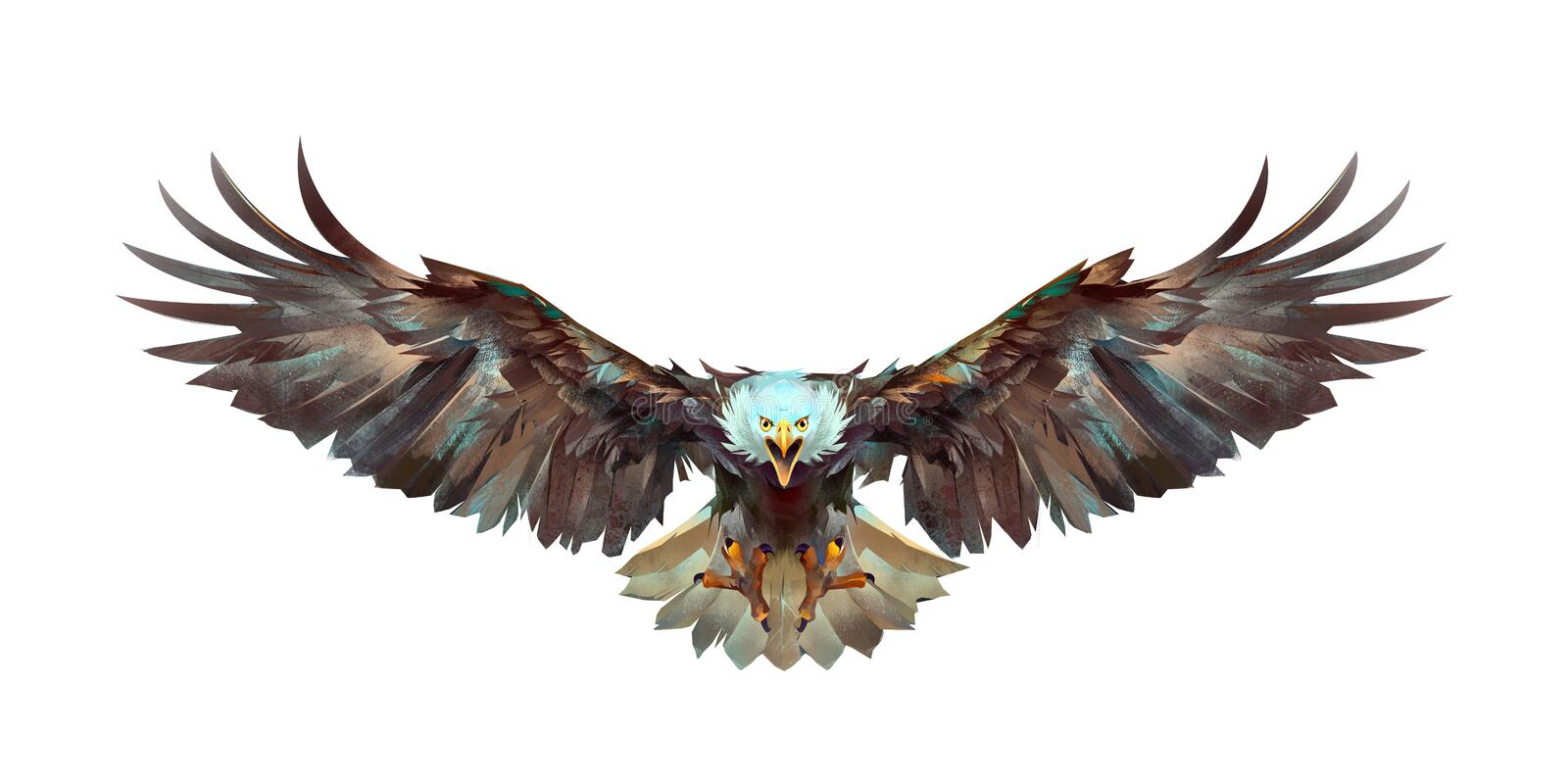 Painted a flying eagle on a white background front royalty free stock photography