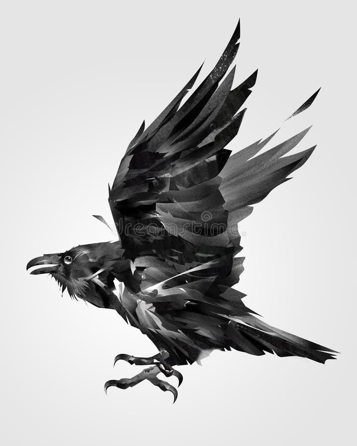 Painted isolou o corvo do pássaro de voo no lado ilustração royalty free