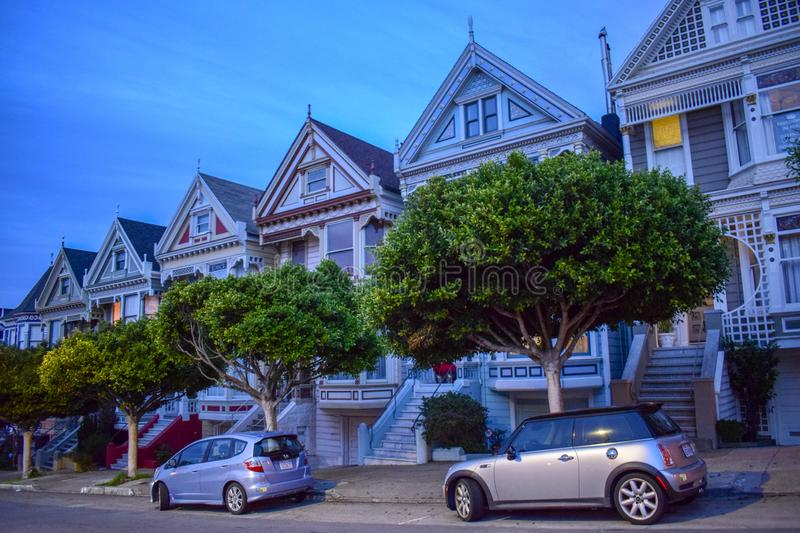 Painted Ladies at Dusk stock photos