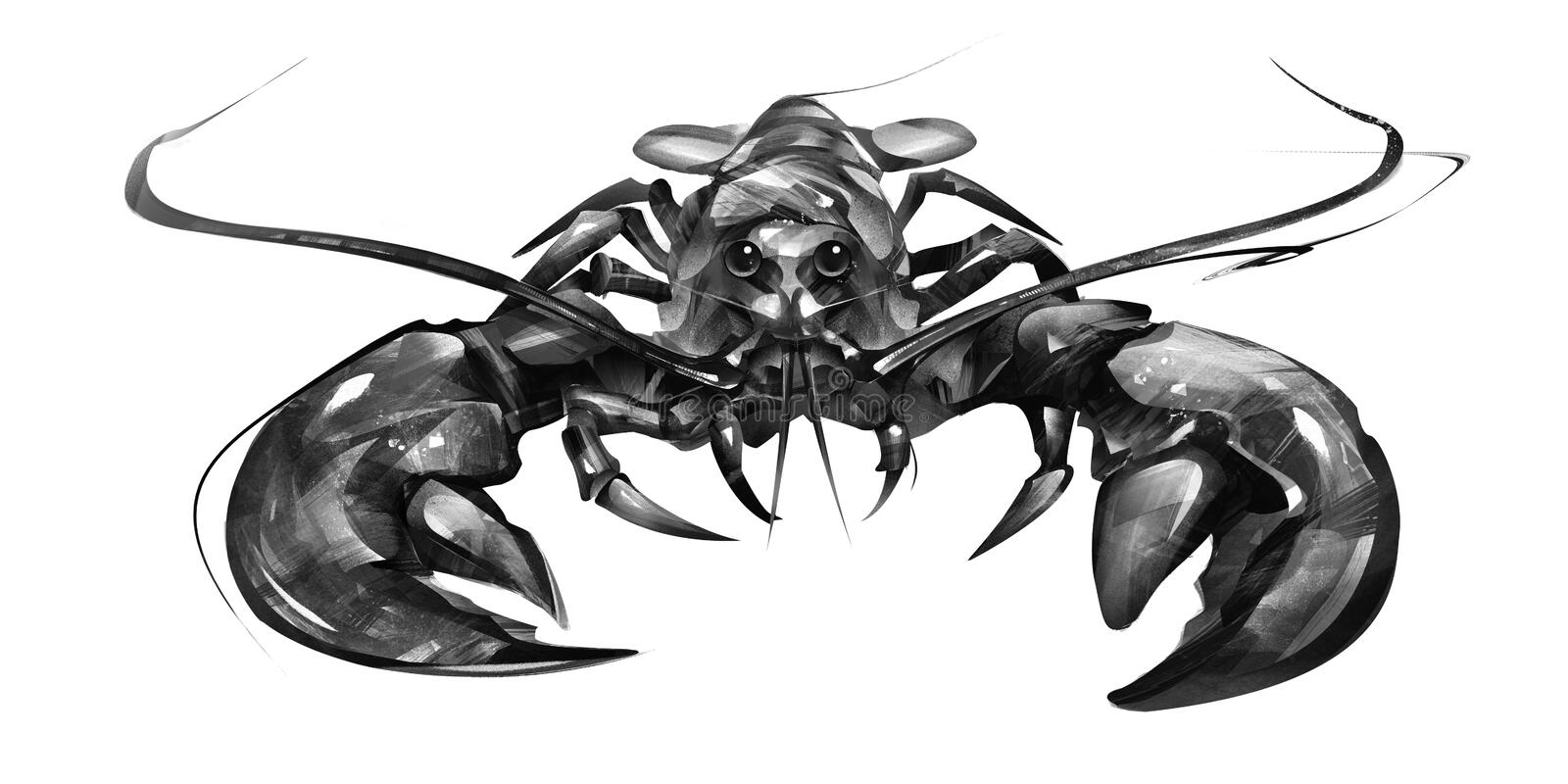 Painted lobster on white background in front. Sketch lobster on white background in front stock illustration