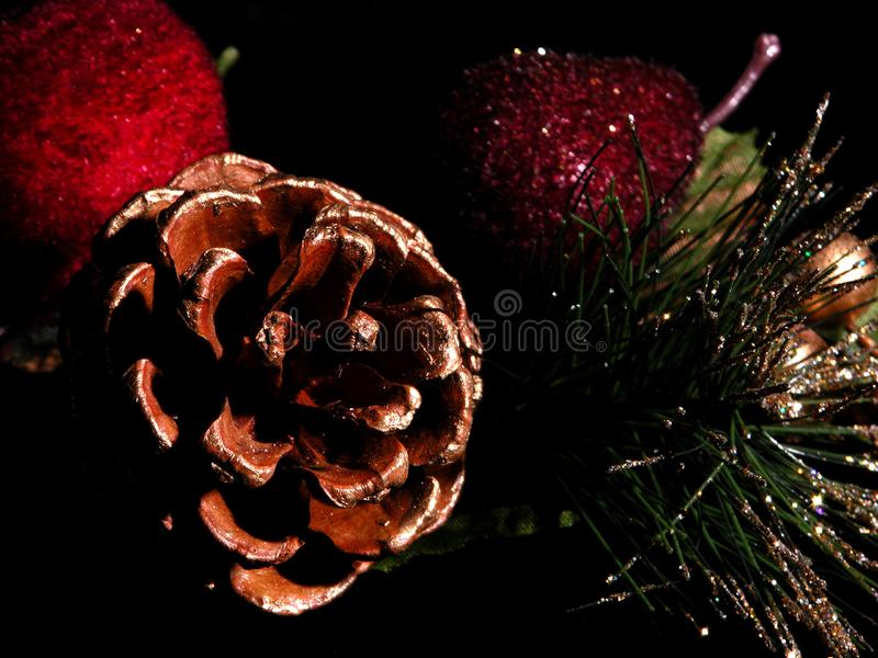 Painted Pinecone on Black