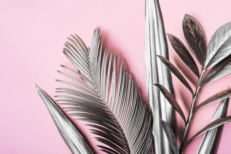 Painted in silver tropical leaves on pink pastel background. Natural Creative layout. Minimal surrealism background.  royalty free stock photography