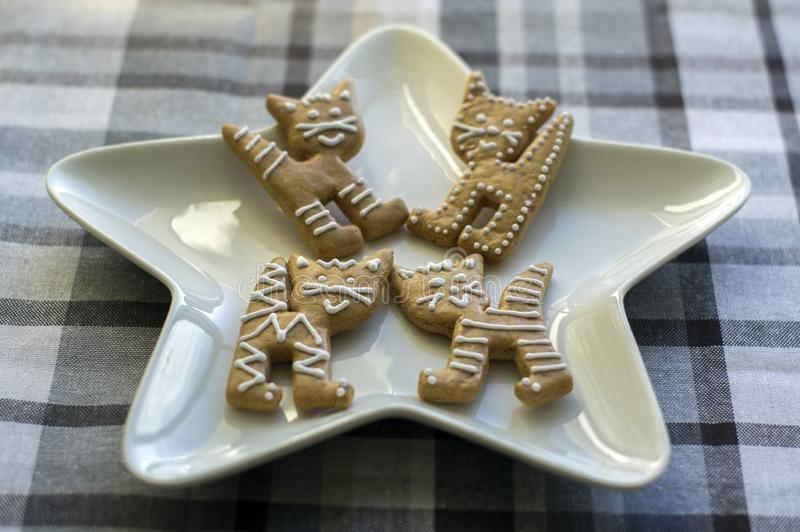 Painted traditional Christmas gingerbreads arranged on white star shaped plate, group of funny marble Xmas cats stock image