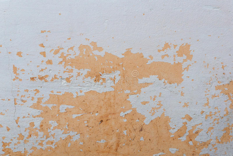 Painted wall`s background / orange real texture isolated on white with copy space stock photo