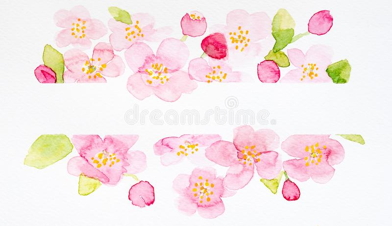 Painted watercolor orchids royalty free stock image