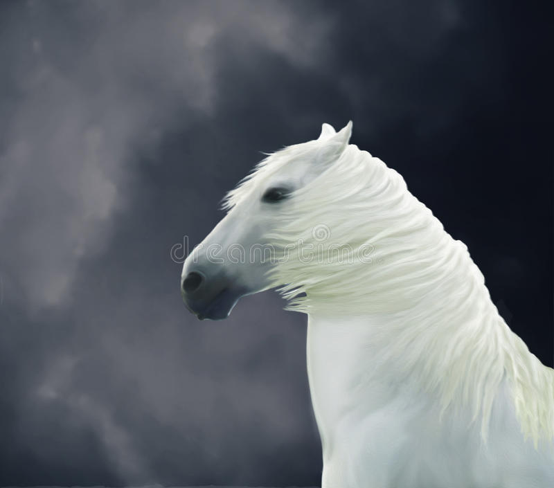Painted white horse