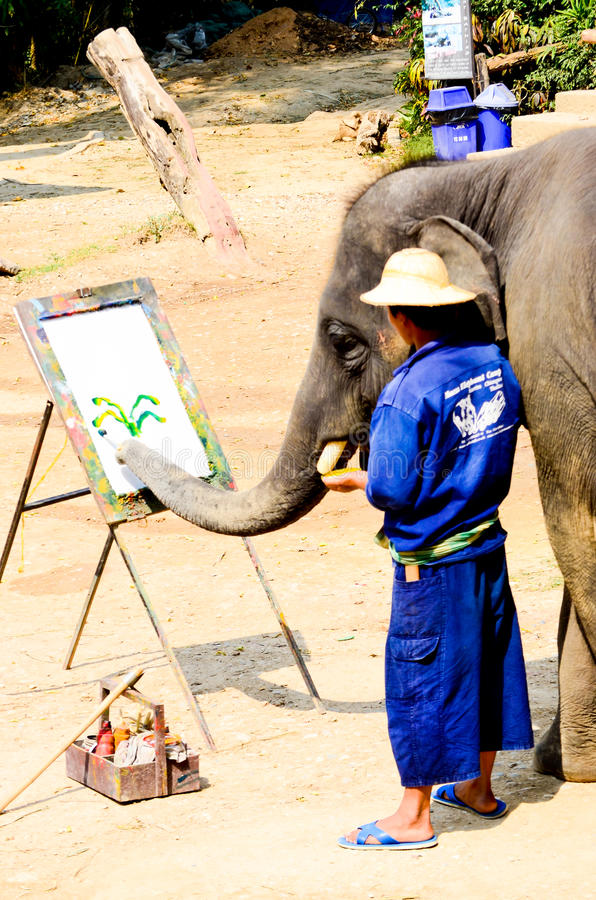 Download Painting Colorful On White Board By Elephant. Editorial Stock Image - Image: 24145299