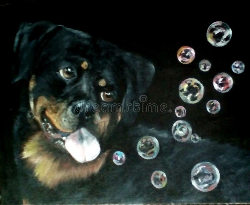 Painting ` dog catches soap bubbles` stock images