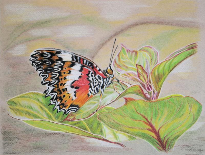 Painting of Lacewing butterfly (underside) royalty free stock image