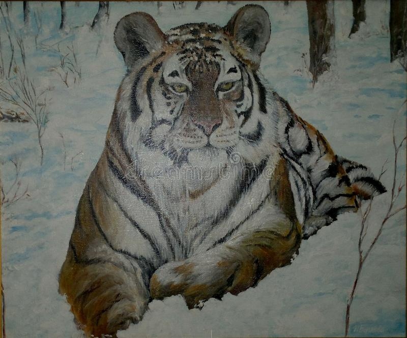 Painting. Oil paintings `Amur handsome` royalty free stock photo