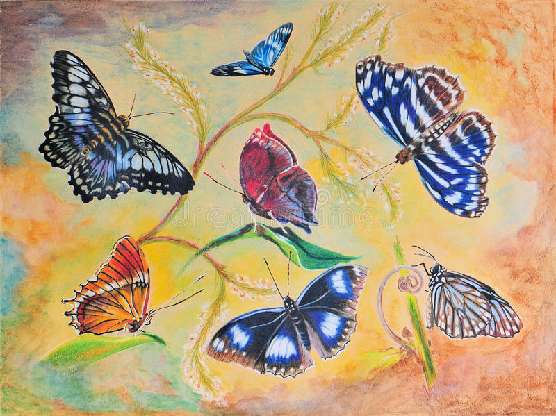 Painting of Seven Butterflies. Very detailed artwork of seven butterflies painted with color pencils, and watercolor background. Also available as Greeting Card royalty free illustration