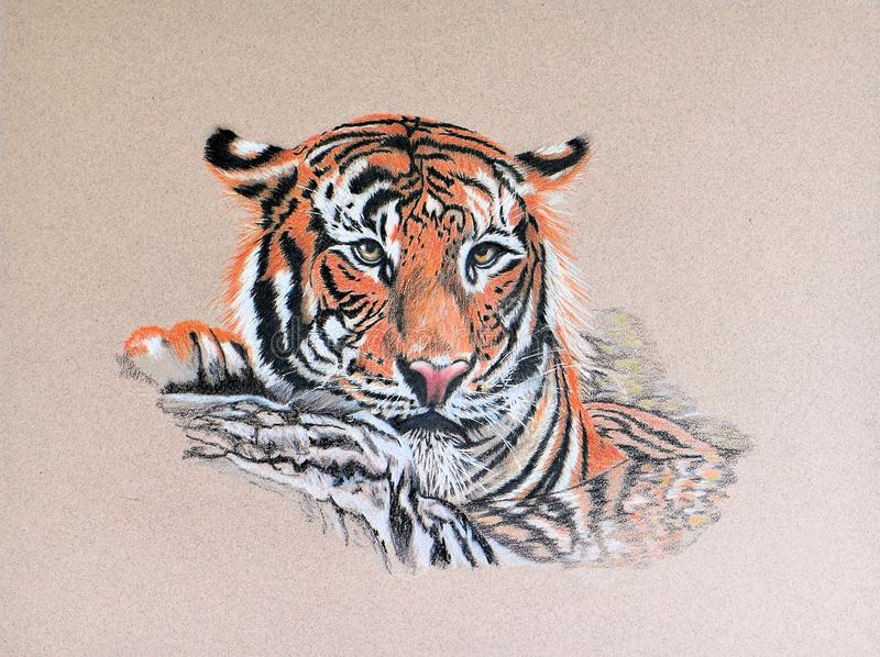 Painting of tiger royalty free stock photos