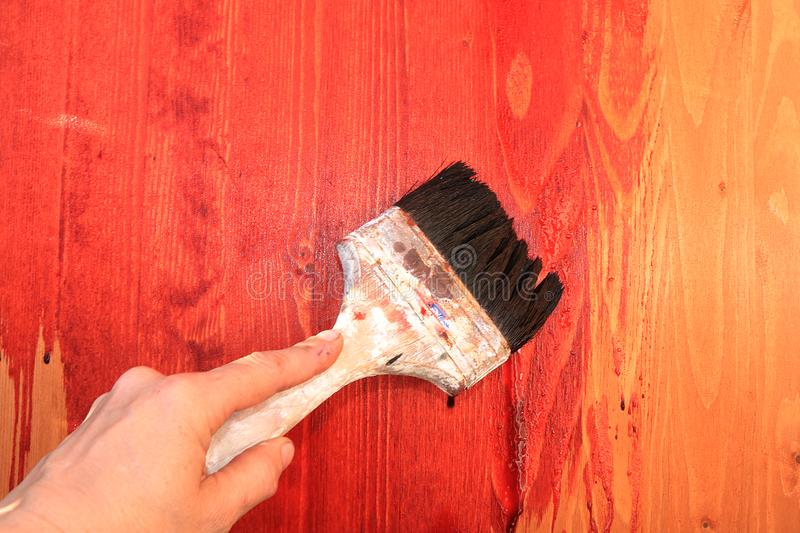Painting wooden walls during the repair. Making wooden backgrounds for a photo with your own hands. Repair work in the new house, brushes, paints and paints royalty free stock images