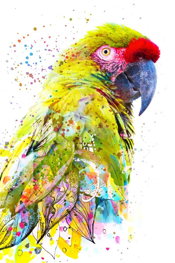 Paintography. Double exposure photograph of a tropical parrot combined with colorful hand drawn painting stock photography