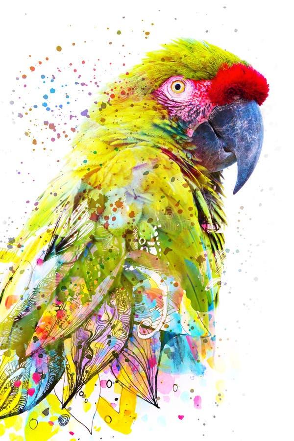 Paintography Photographie de double exposition d'un perroquet tropical combiné avec la peinture tirée par la main colorée photographie stock