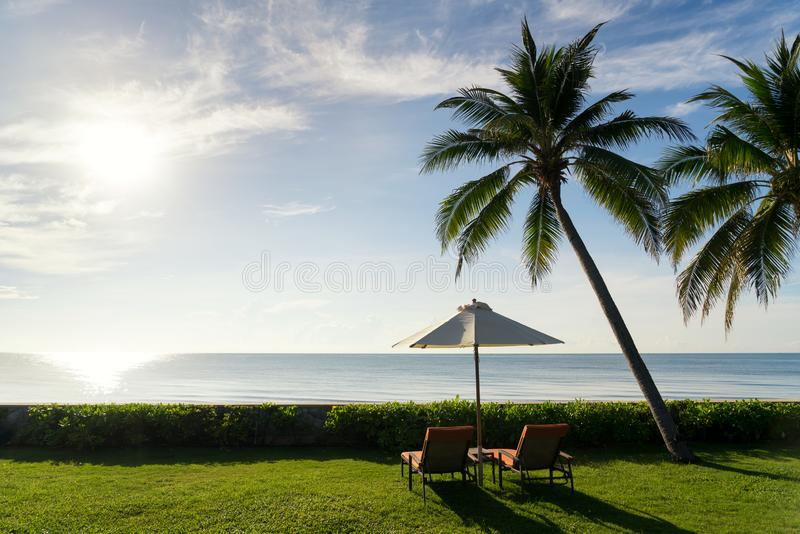 A pair of beach chairs on green grass with big palm tree at sunrise beautiful blue sky beach royalty free stock photos