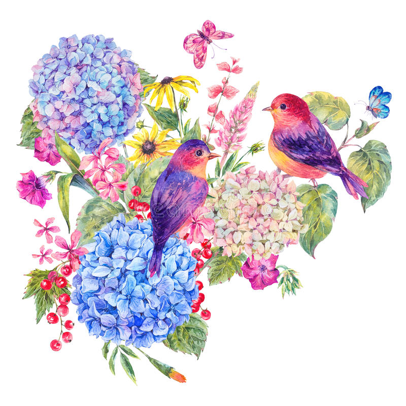 Pair of birds, blooming hydrangea with wildflowers royalty free illustration