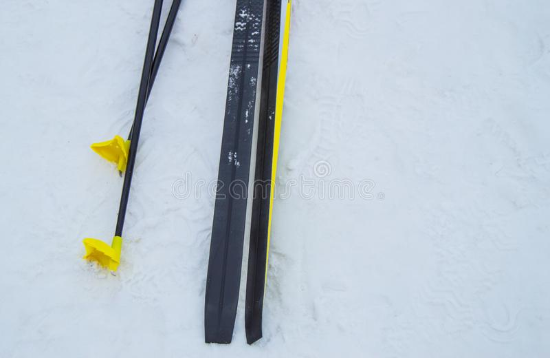A pair of black cross-country skis and metal yellow ski poles left on snow, winter background with copy space. The royalty free stock images