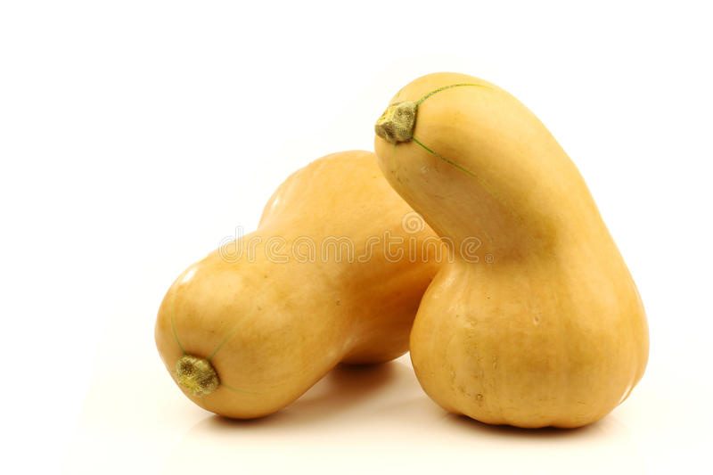 Pair of bottle shaped butternut pumpkins royalty free stock photos