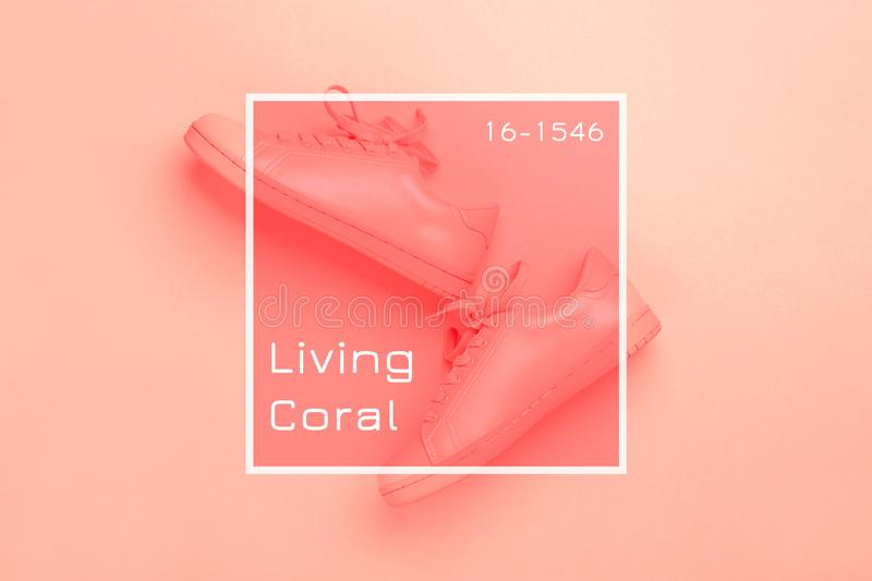 One pair of coral shoes on coral background. Pair of coral shoes on coral background. Trendy Living Coral color of the year 2019. Monochrome image royalty free stock photography