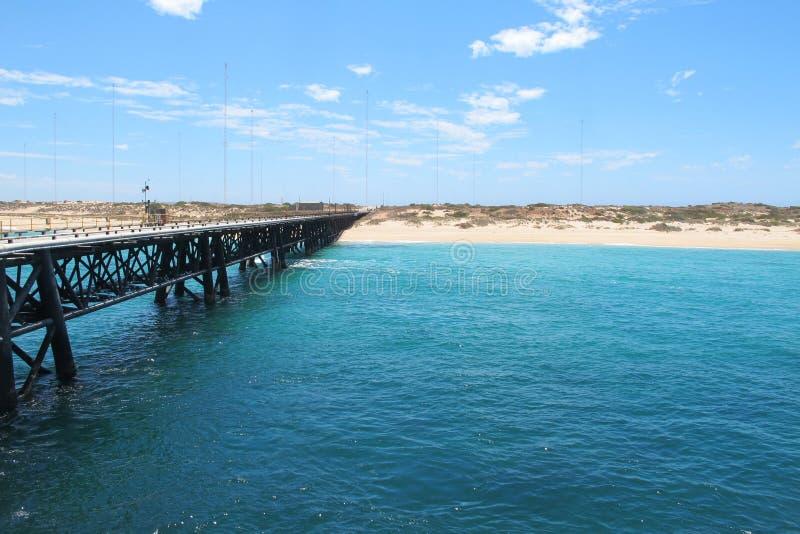 Pair de marine, exmouth, Australie occidentale images libres de droits