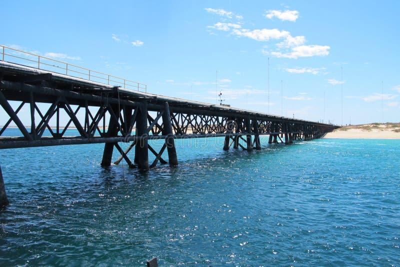 Pair de marine, exmouth, Australie occidentale image libre de droits