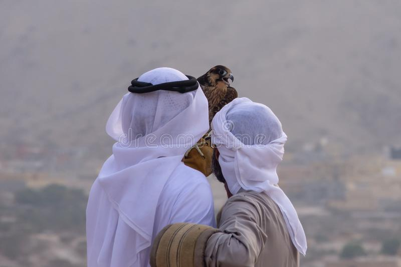 A pair of Emirati falconers hold a peregrine falcon  Falco peregrinus in the United Arab Emirates UAE a culture and tradition. In the Middle East stock photos