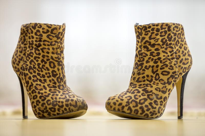 Pair of fashionable high heel brown yellow women shoes boots on light copy space background. Style and fashion, footwear royalty free stock image