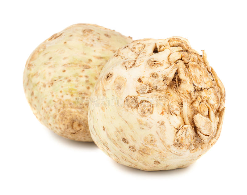 Pair of fresh celery root royalty free stock photography
