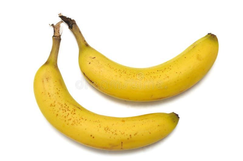 A pair of fully ripened bananas stock photo