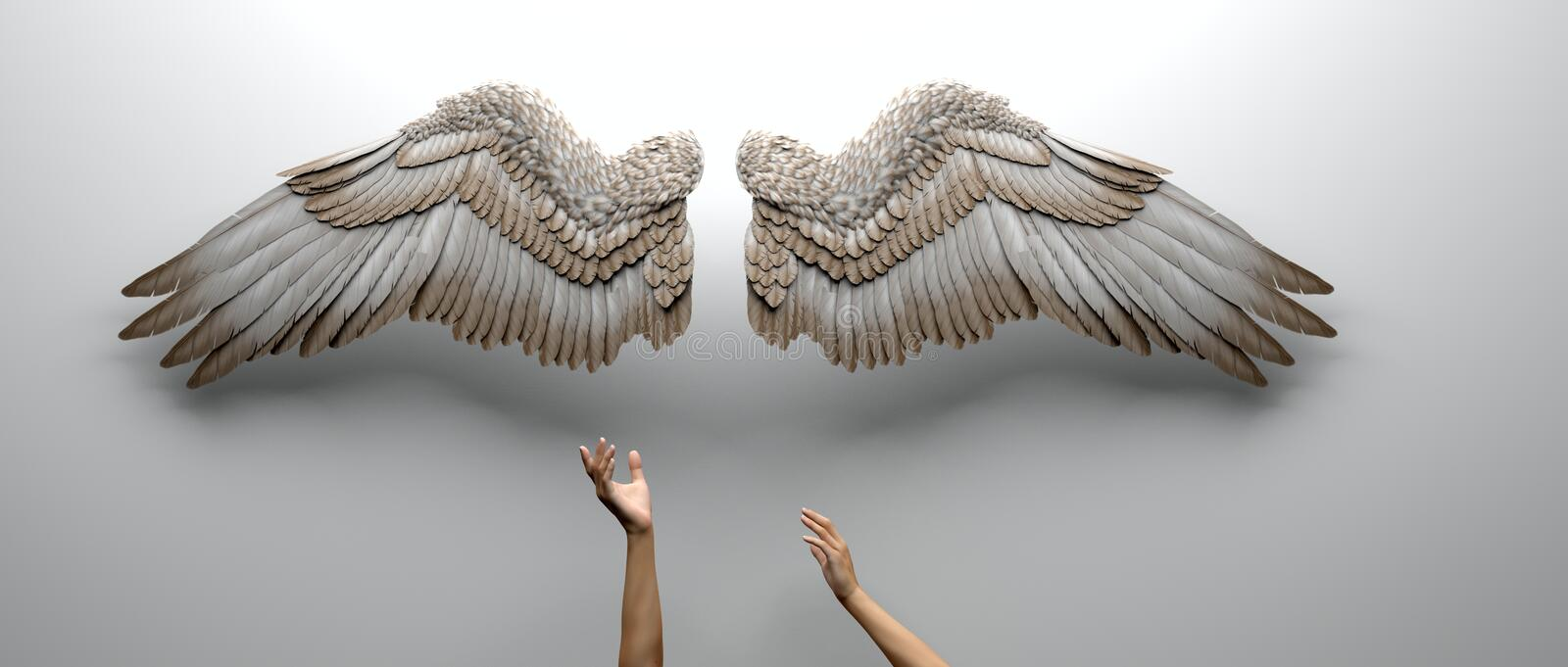 Arms and Wings royalty free illustration