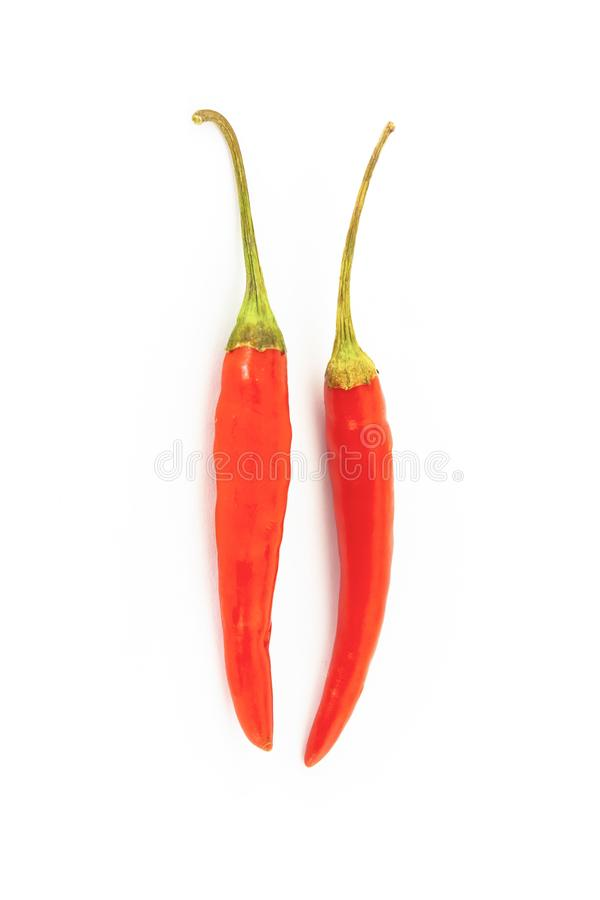 Pair of hot red chili peppers thin pods of a couple of vegetables on a white background isolated stock photography