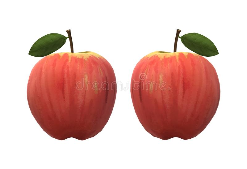 A pair of identical red apples royalty free stock image