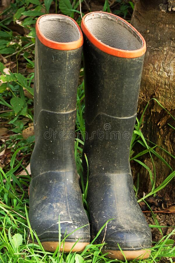 Free Pair Of Wellington Boots In The Grass Royalty Free Stock Image - 174804186