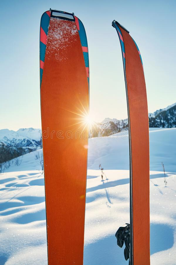 Pair of orange skis for ski touring. Pair of skis in snow with orange camus at sunny morning at the mountains royalty free stock photo