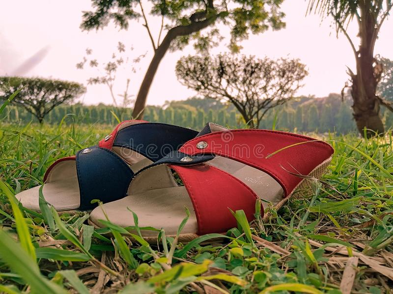 A pair of red and black sandals of a lady in the lap of greenery. It`s lying on green grass. The time is sunset. Behind it the landscape is beautiful and full stock photo