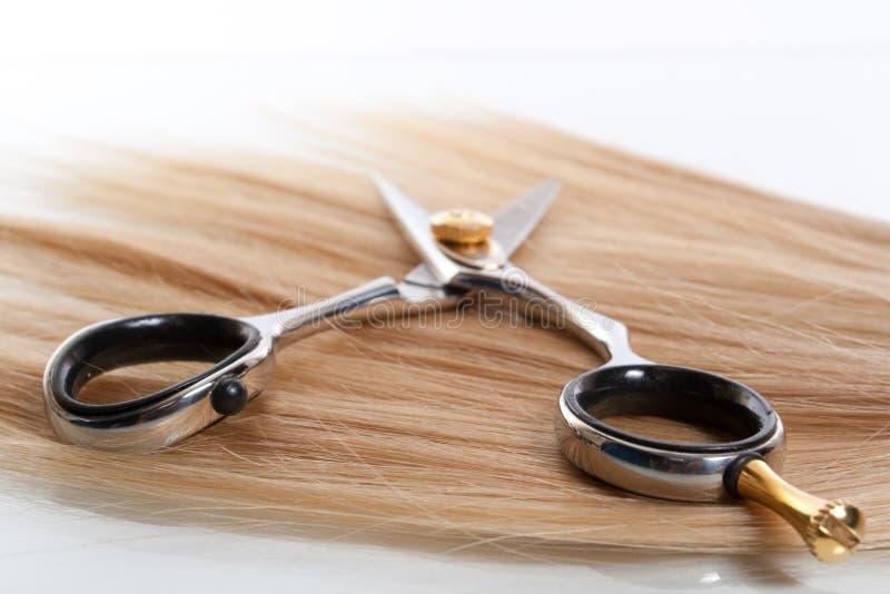 pair of scissors stock images
