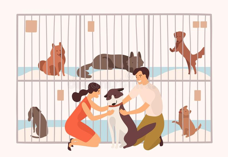 Pair of smiling young man and woman adopting pet from animal shelter, pound, rehabilitation or adoption center for stray. And homeless dogs. Colorful vector royalty free illustration