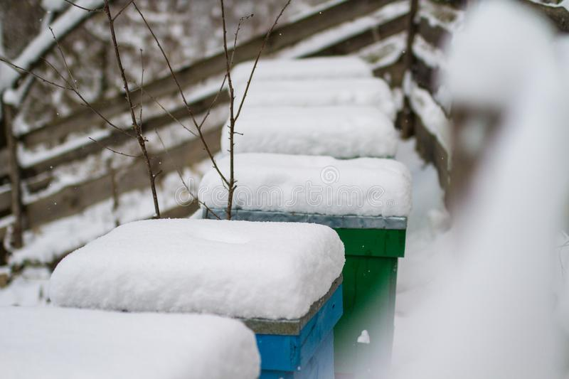 A pair of snow covered bee hives. Apiary in wintertime. Beehives covered with snow in wintertime. stock photo