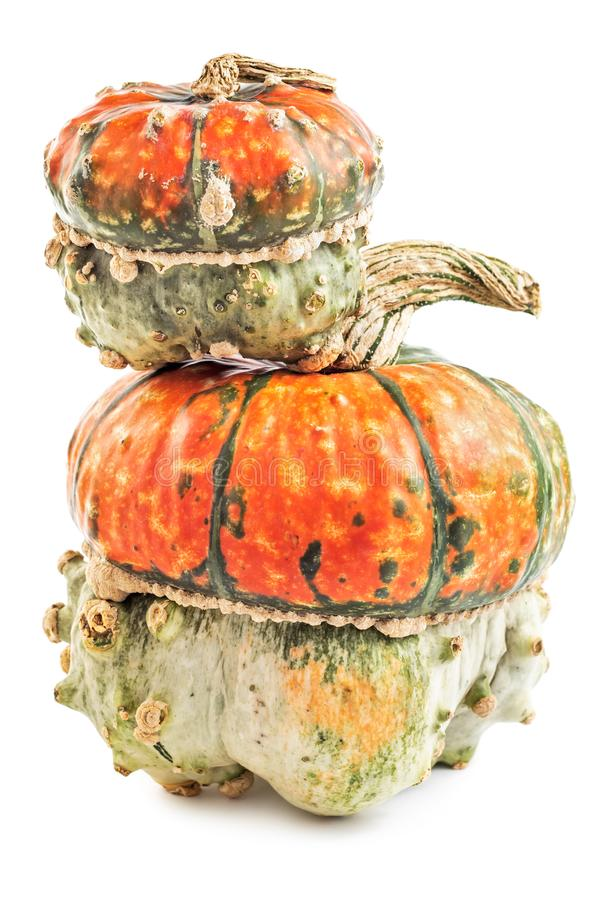 Spooky scary pumpkins isolated on white background. Pair of spooky scary pumpkins isolated on white background stock photo