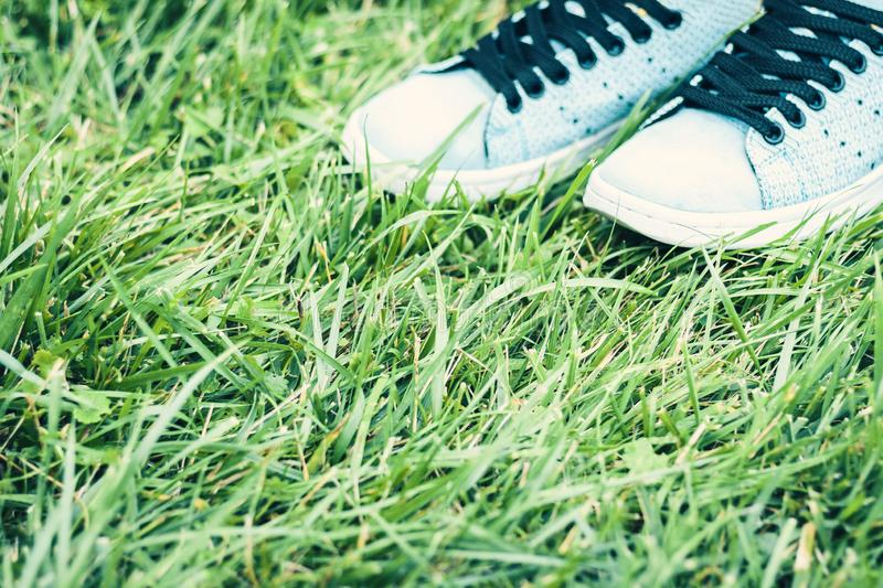 Pair of sport shoes of blue suede on the grass in park.  royalty free stock photo