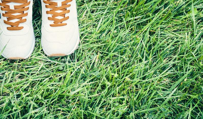 Pair of sport shoes of grey suede on the grass in park stock image