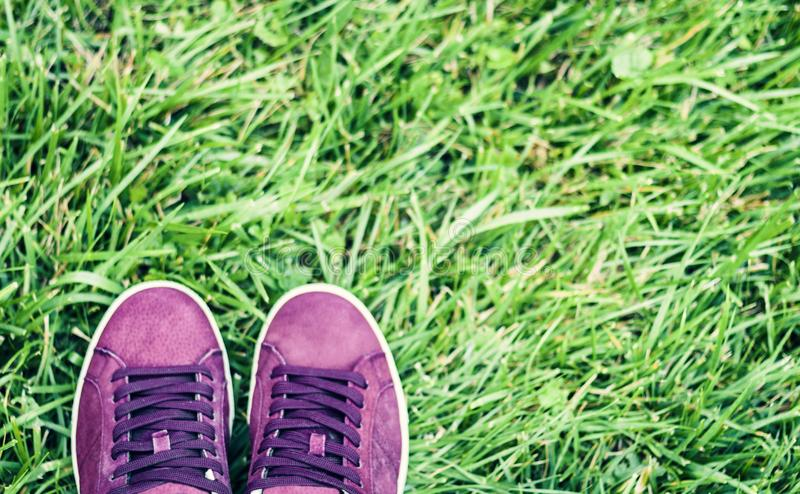 Pair of sport shoes of pink suede on the grass in park.  stock photos