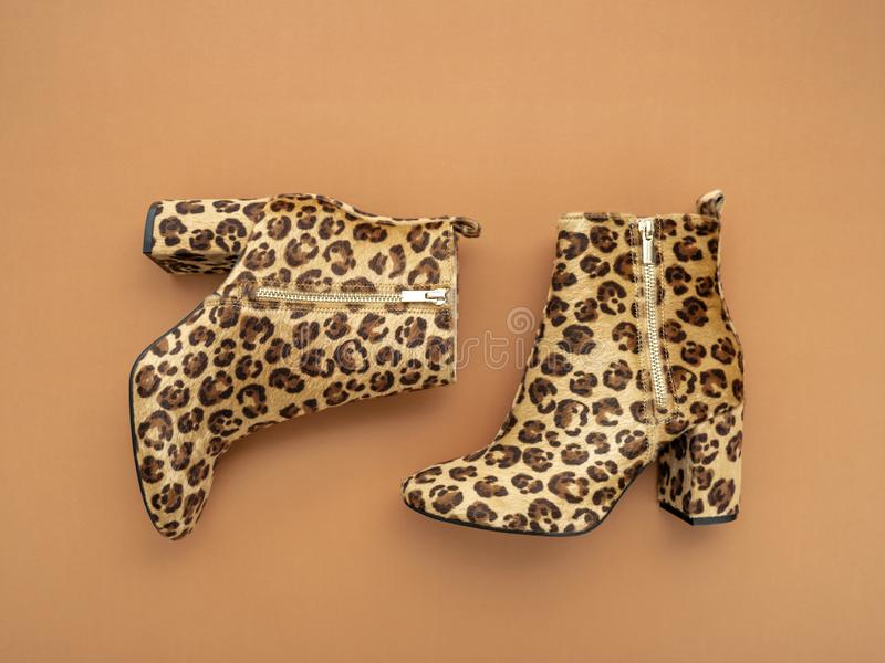 Pair of stylish leopard boots. stock image