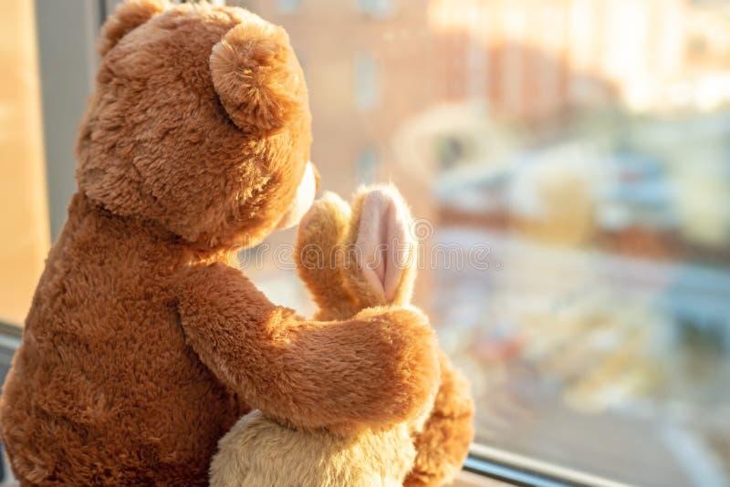 Pair of toys. Bunny and teddy bear Embracing loving teddy bear toy and bunny sitting on window-sill stock photos